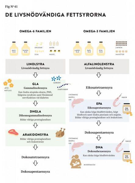 stig bengmark omega 3