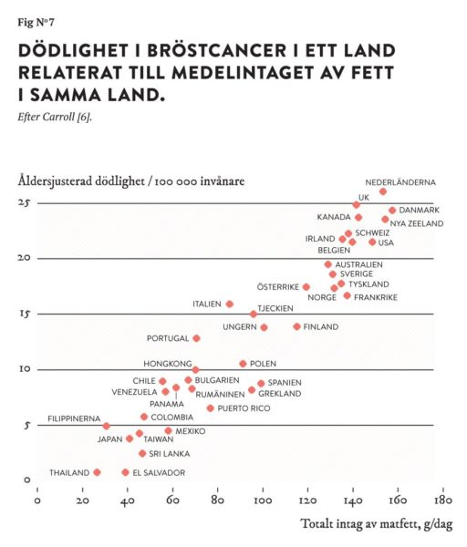 STIG BENGMARK KRÖNIKA SMÖRGÅS MJÖLK 2